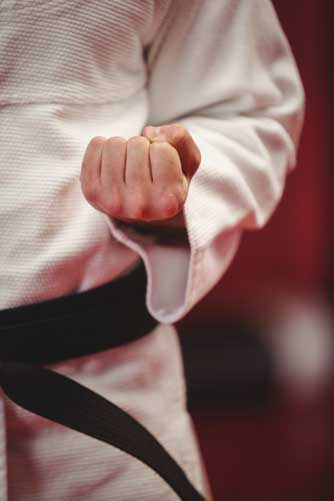 Estilos del karate