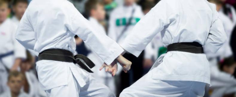 Historia de la Federación Española de Karate