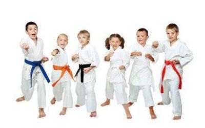 Katas básicos del karate para niños