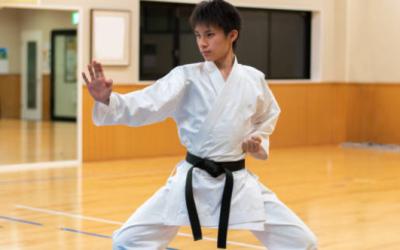 ¿Cuántos estilos de karate existen?