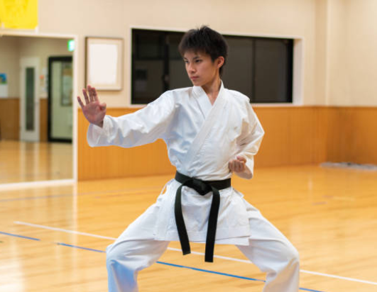 Cuántos estilos de karate existen