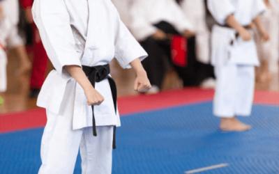 Cuántos países participarán en los juegos de karate olímpico