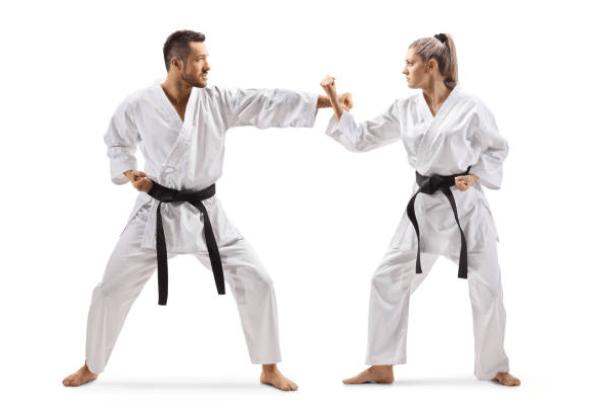 Precursores del karate