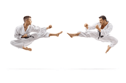 actores especialistas en karate
