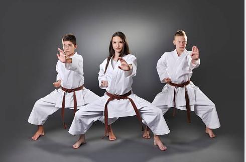 caracteristicas que todo karateca debe tener