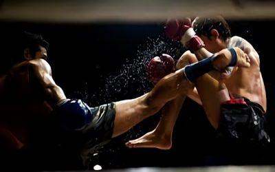 Las artes marciales más peligrosas del mundo