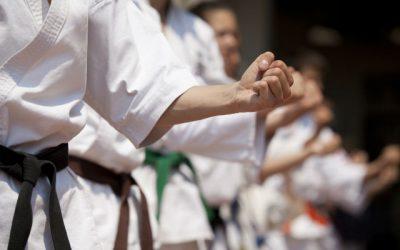 Estilo de karate Wado Ryu