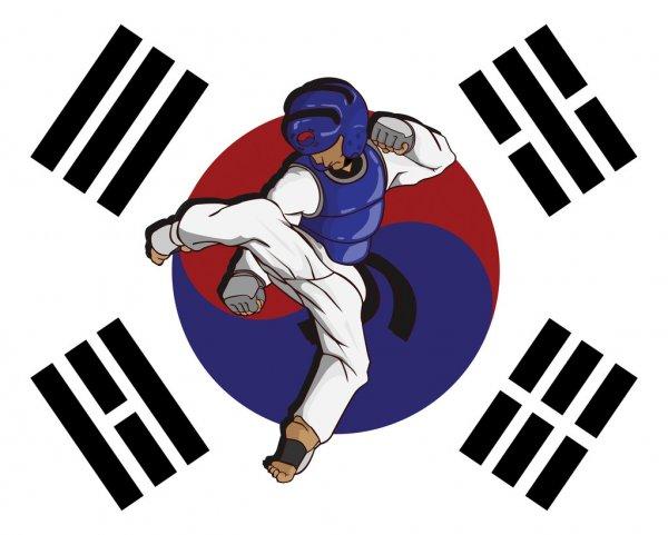 Taekwondo un deporte de combate