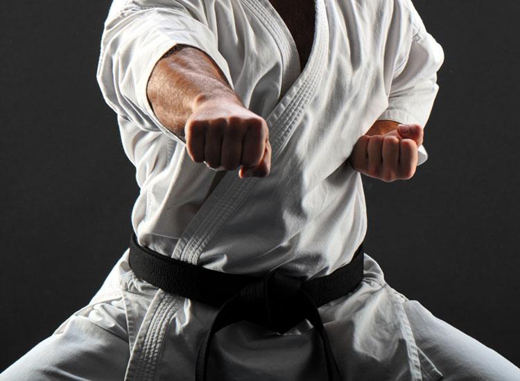 sistema de combate Koryu Uchinadi
