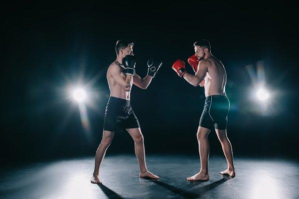 MMA deportes de combate