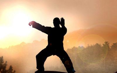 Tai Chi un arte marcial muy útil para la defensa personal