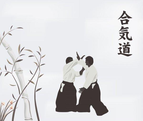 Aikido Vs otras artes marciales