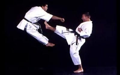 Patadas Krav Maga y otras artes marciales: una obra de movimientos muy complejos