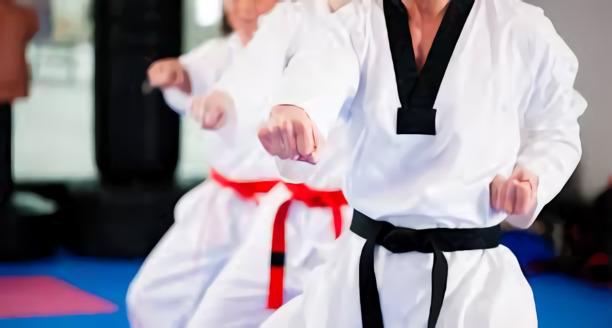 Las 10 artes marciales menos conocidas