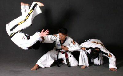 El factor religioso y los valores de las artes marciales coreanas