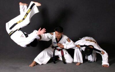 Hapkido: un arte marcial coreano con valores fundamentales para la humanidad