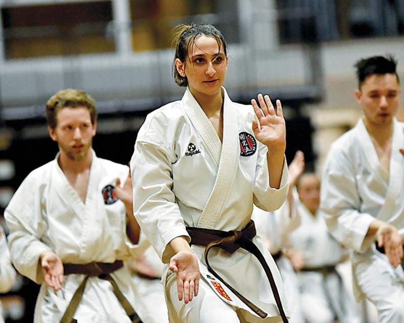 Diferencias entre el Kung fu, Karate y Taekwondo