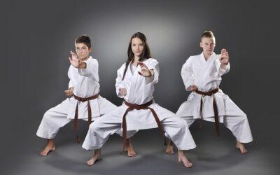 5 Bloqueos básicos practicados en Kihon