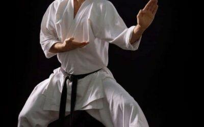 Bloqueos practicados durante katas