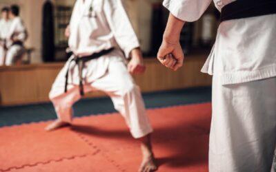 ¿Por qué combinar las artes marciales con otros deportes?