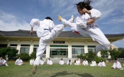 Taekkyon: el arte marcial original de Corea