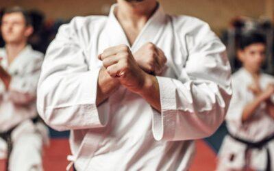Fundamentos clave del éxito en las artes marciales