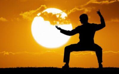 Suavidad en las artes marciales
