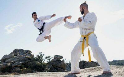 Patadas con salto en las artes marciales