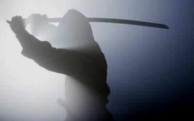 ¿Quiénes eran los ninjas?